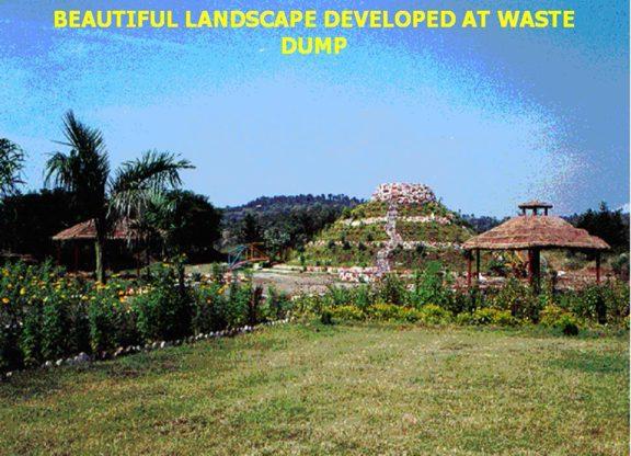 Garden Images6